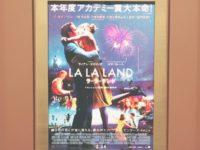 こんなに裏切られた映画は初めてでした/『ラ・ラ・ランド』レビュー